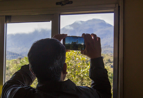 Atlantic Rainforest train ride with passenger taking a photo out the window