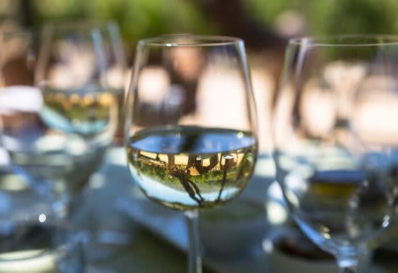 white wine in chile
