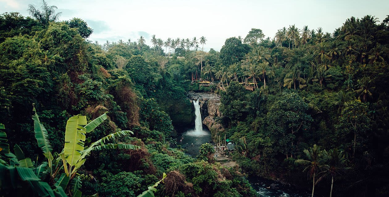 amazon rainforest view of waterfall surrounded by jungle