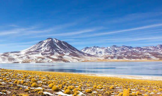 Lagoon in the Atacama Desert Chile