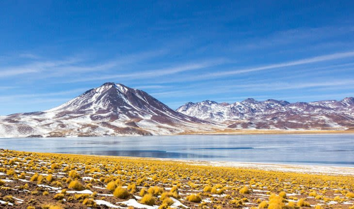 Lagoon in the Atacama Desert Chile