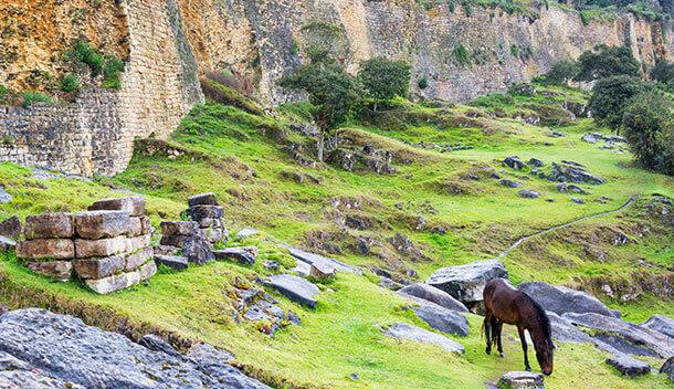 horsegrazing near kuelap fortress