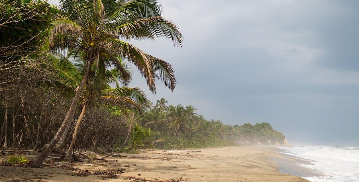 nuqui colombia