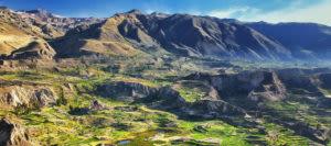 terraces in colca canyon peru
